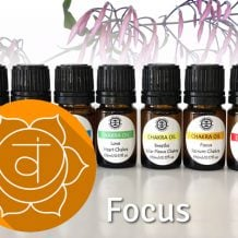 Chakra Oil Blends Focus