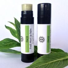 Organic Fresh Mint Lip Balm